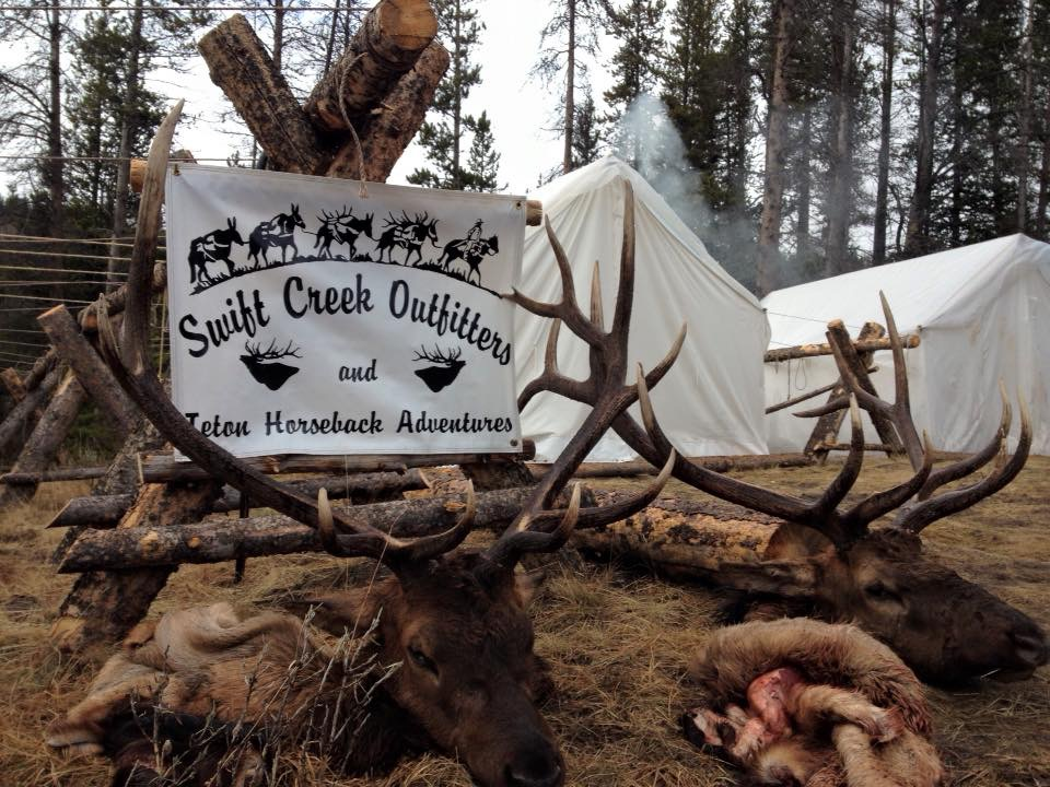 Image result for elk hunting adventures